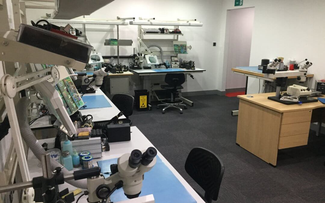 Mesh Global Opens New IPC Training Centre